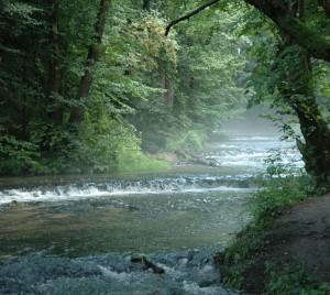 Польша. Река Ливец