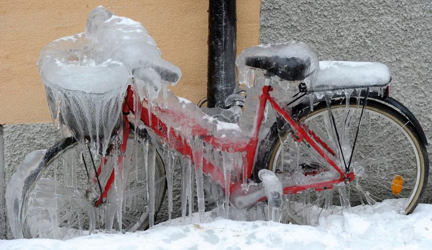 10.02.2010, Швеция, Стокгольм