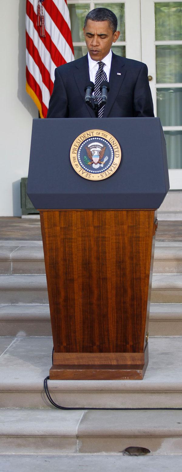 21.05.2010 США, Вашингтон