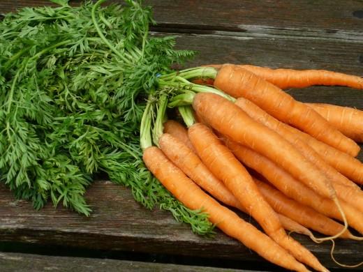 Врачи рекомендуют морковь как средство от многих болезней