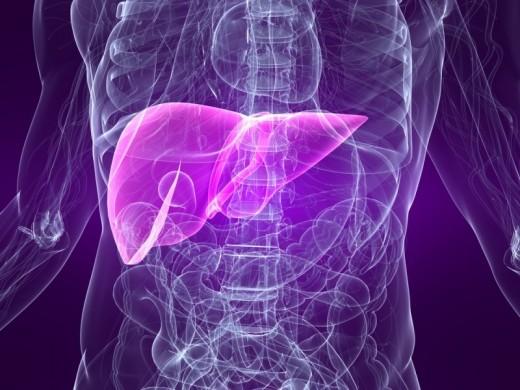 Гепатит, его симптомы и лечение