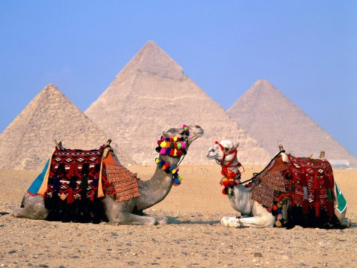 Тунис и Египет: какую страну выбрать для отдыха?