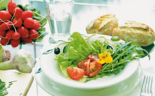 Летняя диета. Какие продукты входят в состав летней диеты?