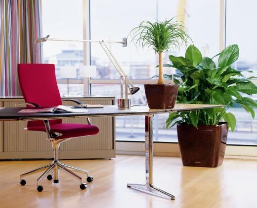 «Лисмебель» предлагает: стильные и удобные кресла для руководителей