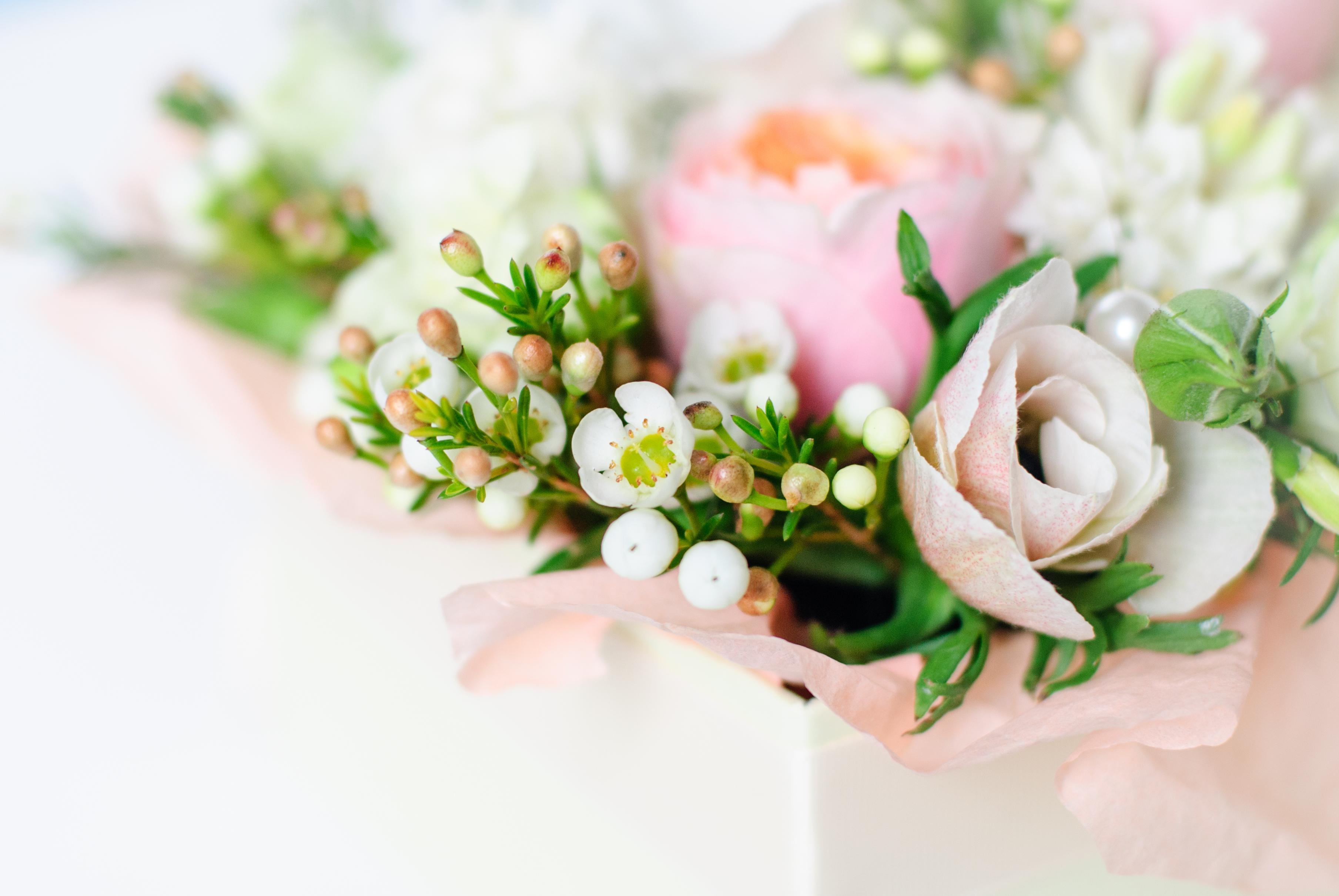Недорого букеты на заказ, цветы томск пионы