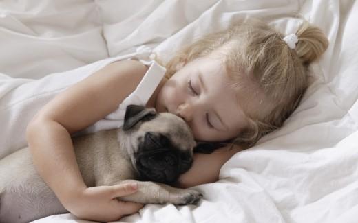 Что нужно знать о воспитании маленькой собаки?