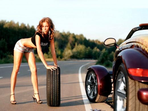 Где можно купить шины для любых видов транспорта?