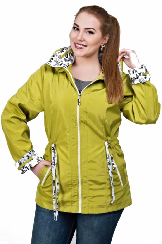 Какие демисезонные куртки сейчас являются лучшими на рынке?