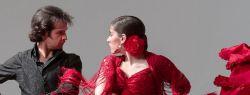 Танцевальные направления и стили