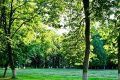 Экология Наро–Фоминска – лучшее место для жизни
