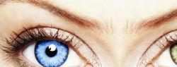Где купить контактные линзы?