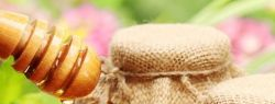 Медовый спас на Летнем Рынке «Фермерия» в Парке Ремесел на ВДНХ с 13 по 14 августа.