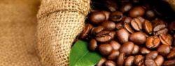 Компания «NiceCoffee» – купить кофе просто или просто купить кофе