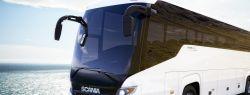 Какие типы пассажирских автомобильных перевозок бывают?