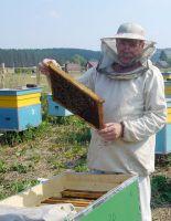 Где купить все необходимое для пчеловодства?