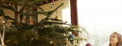 5 способов необычно украсить елку