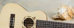 История гитары — Укулеле