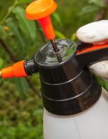 Фунгициды обеспечивают здоровье растениям