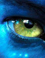 Продолжения «Аватара» выйдут в 2014 и 2015 году