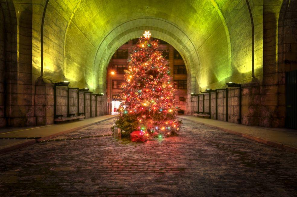 Рождественская елка в Рокфеллер-центре в Нью-Йорке, США