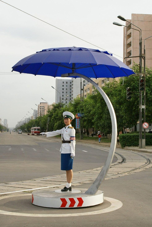 Регулировщица дорожного движения под зонтиком в Корее
