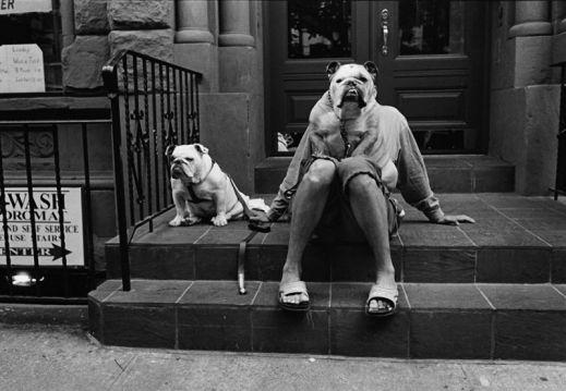 Теплые и забавные фото Эллиота Эрвитта